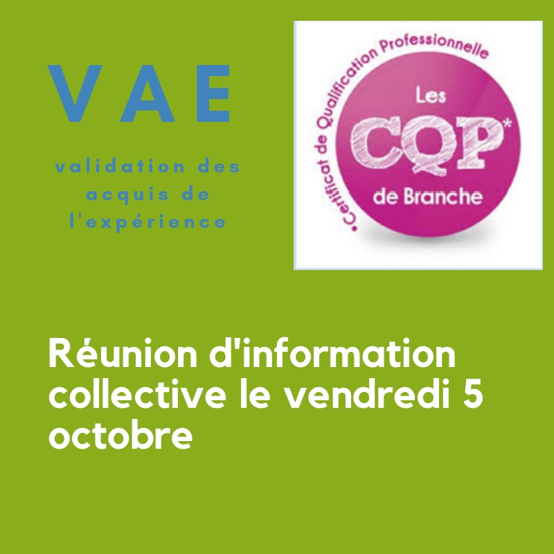 reunion-information-collective-vae